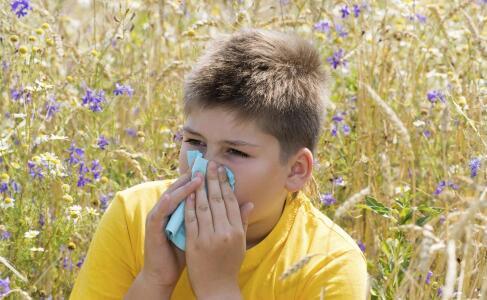 治疗鼻炎的食疗方法有哪些 治疗鼻炎的偏方
