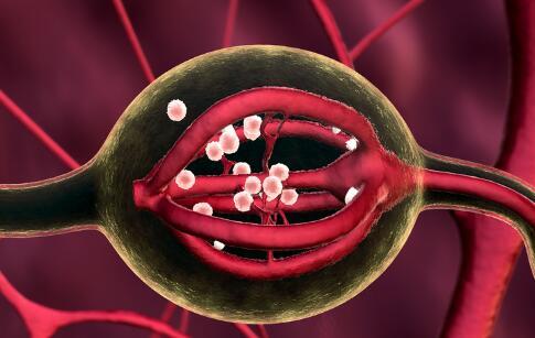 输卵管堵塞还能排卵吗 输卵管不通怎么办