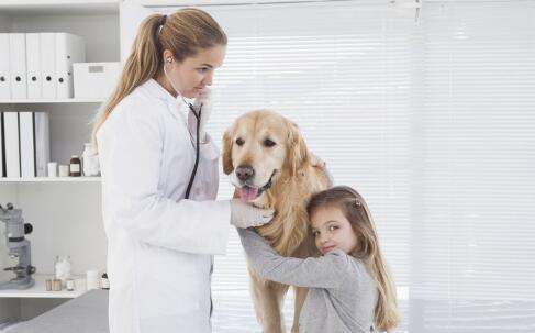 狂犬病会传染吗 狂犬病的传播途径