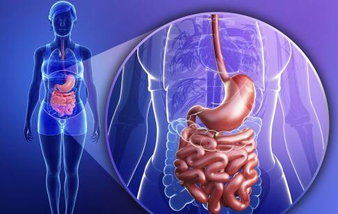 肠道有寄生虫怎么办 寄生虫有什么危害