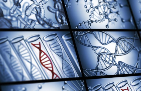 DNA亲子鉴定怎么做 如何鉴定DNA