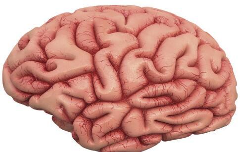 神经纤维瘤能治好吗 抱歉不可治愈